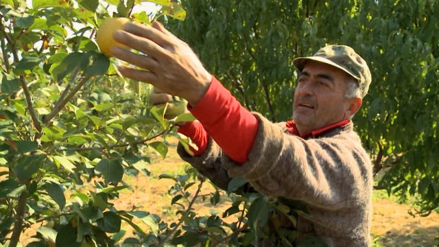 Armenia: A Fruitful Partnership