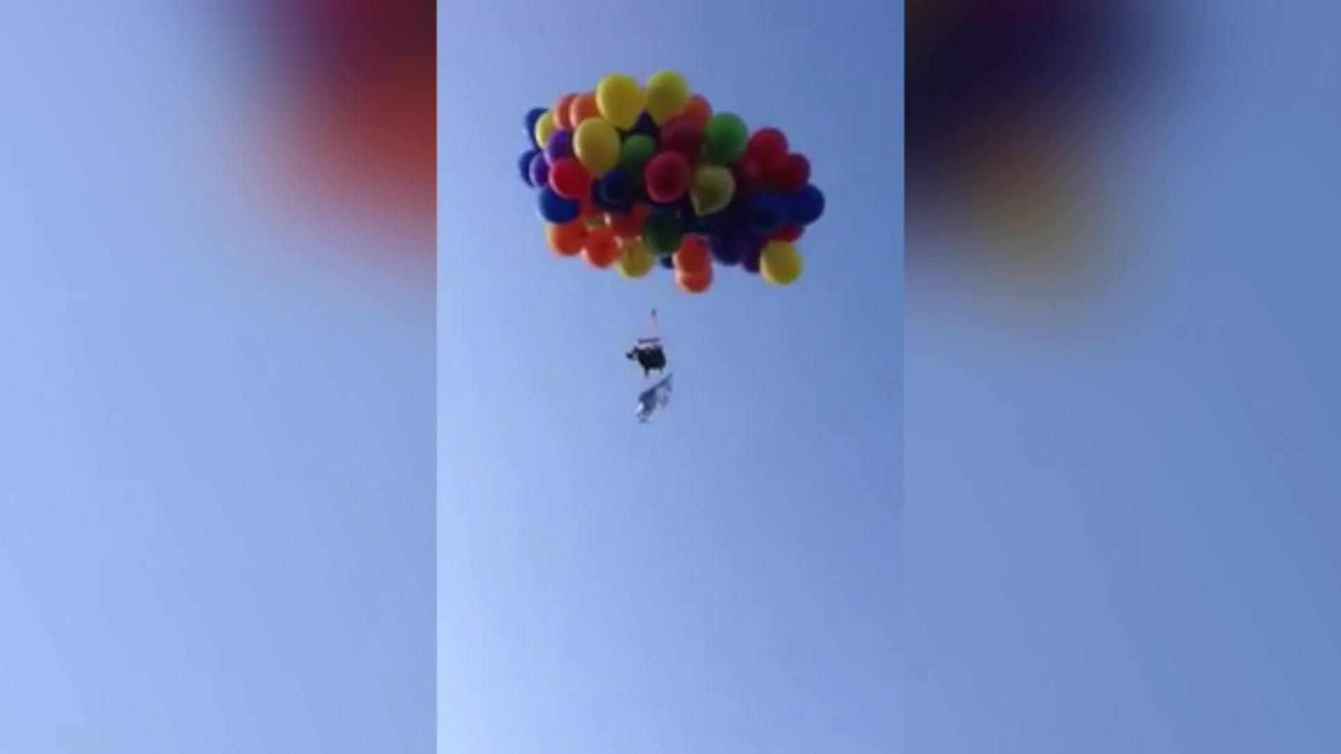 chair with balloons chippendale side man faces charges after flying lawn 100 over canada