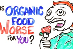 Featured Vid #449 – Is Organic Food Worse For You?