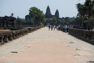 Ca Angkor-1_DSC9048