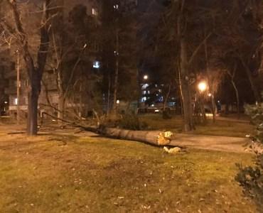 Ветер во Скопје