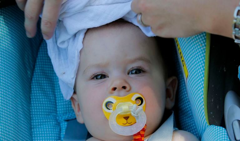 Parental Diet Before Conception Affects Child's Health