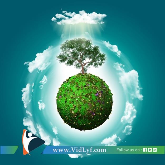 vidlyf.com
