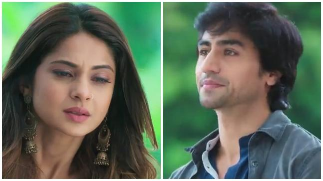 Bepannaah leap: Zoya's and Aditya's new life; here's what will happen next