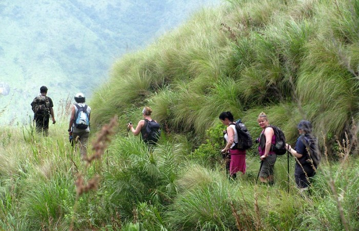 Top Reasons Why Tourists Love Munnar