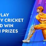 All You Need To Know About Fantasy Cricket, VidLyf.com