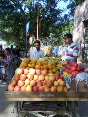 Vidya Sury Personal Responsibility fruits