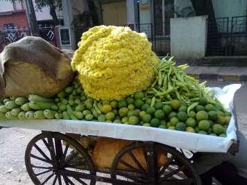 Vidya Sury Personal Responsibility flowers and veg