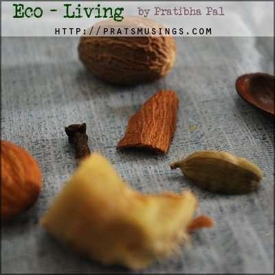 eco-living vidya sury