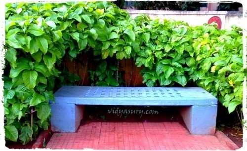 Vidya Sury Measured in Memories (1)
