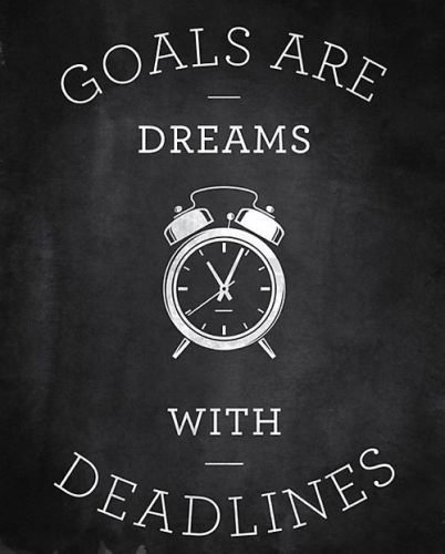 goals vidya sury