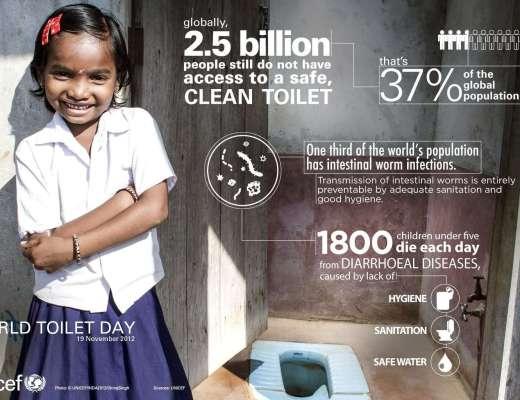 world toilet day vidya sury
