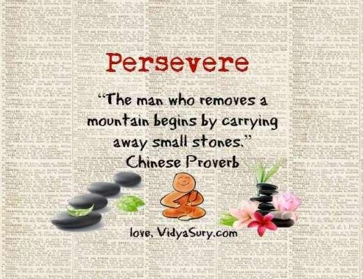 persevere vidya sury