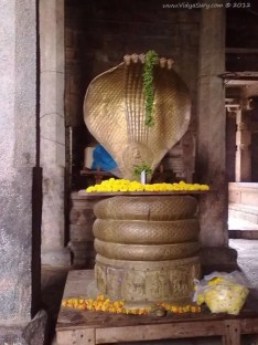 Vidya Sury Adiseshan[10]