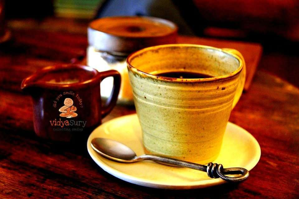How to choose the right drip coffee maker Vidya Sury