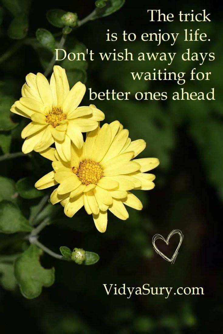 The trick is to enjoy life. Don't wish away days waiting for better ones ahead #gratitudecircle #inspiringquotes #mindfulness