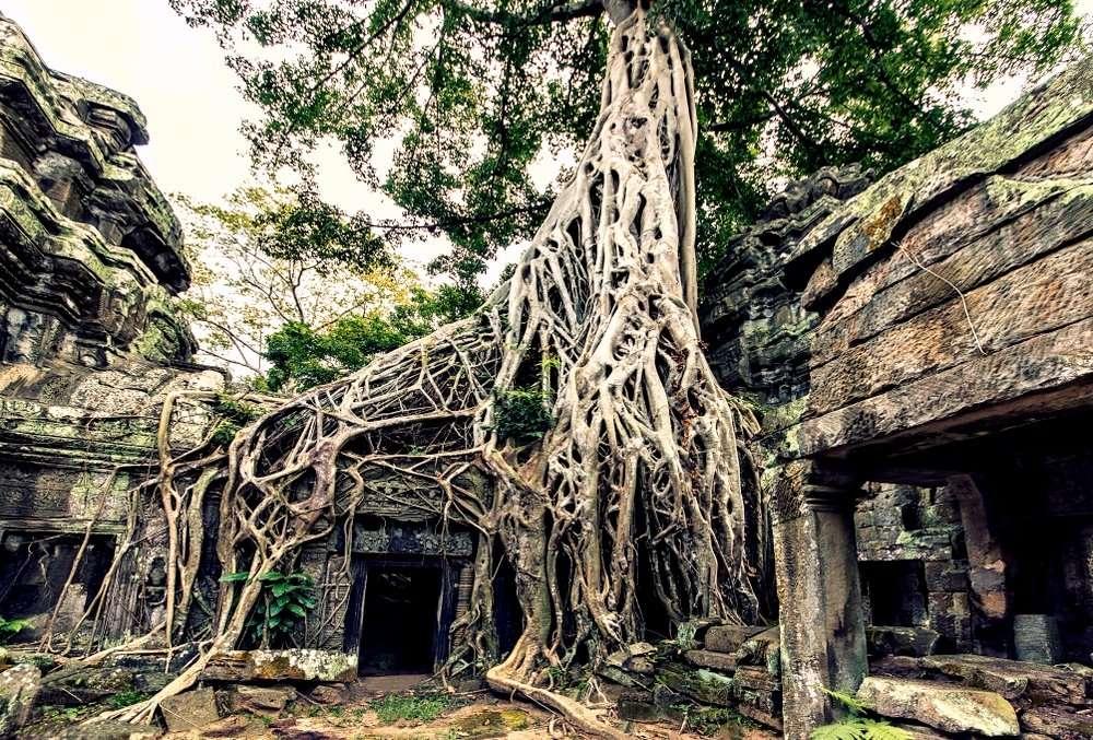 Angkor Vat #SayYesToTheWorld #TheBlindList