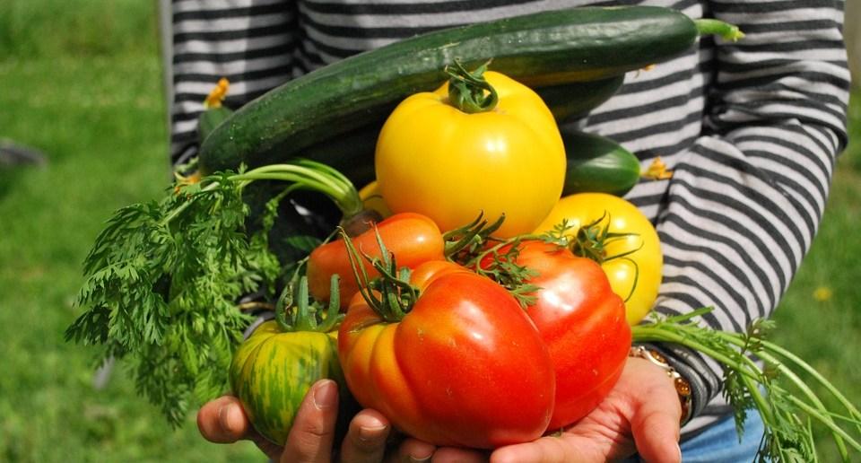 Ces légumes anciens qui méritent une place dans votre potager