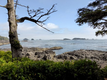 Wild Pacific Trail