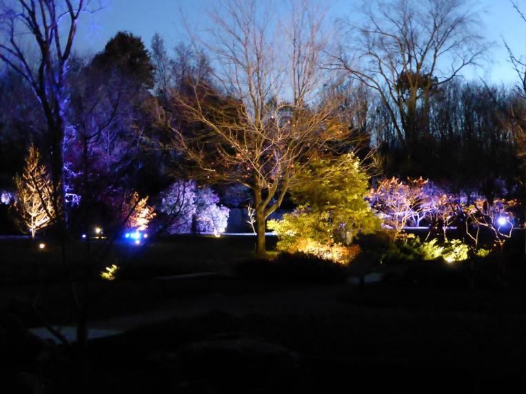 Expo jardin botanique