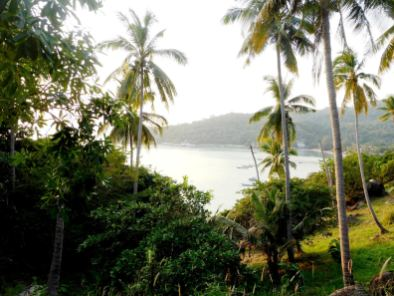 îles de Thaïlande - Koh Tao (2)