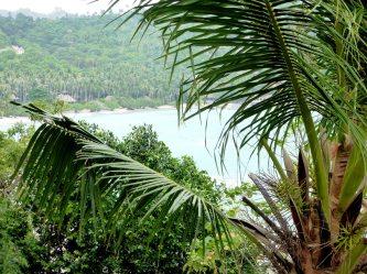 îles de Thaïlande - Koh Tao