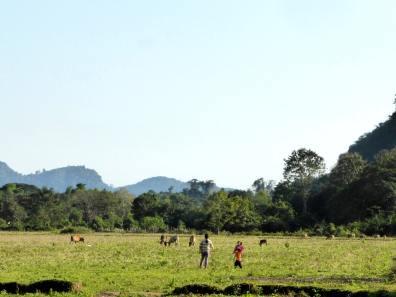 Nord du Laos-Vang Vieng (19)