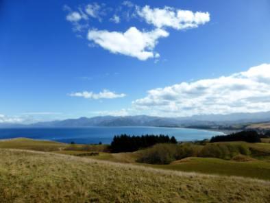 Akaroa-île du Sud