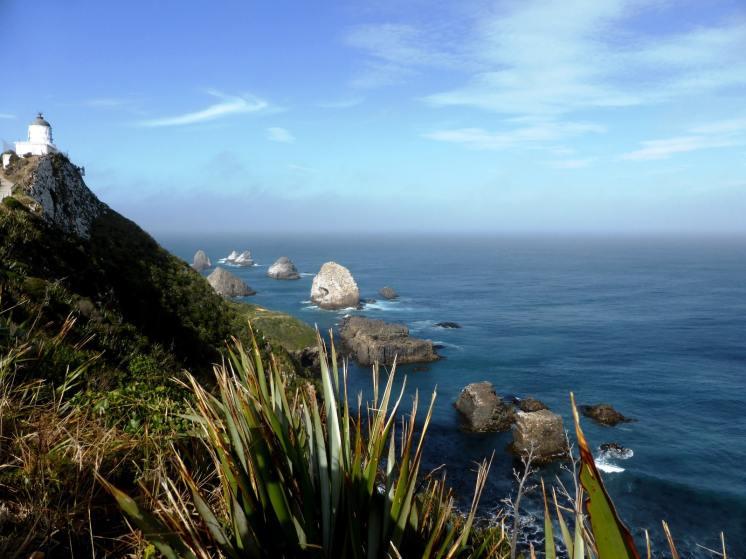 l'île du Sud-Nugget Point (2)