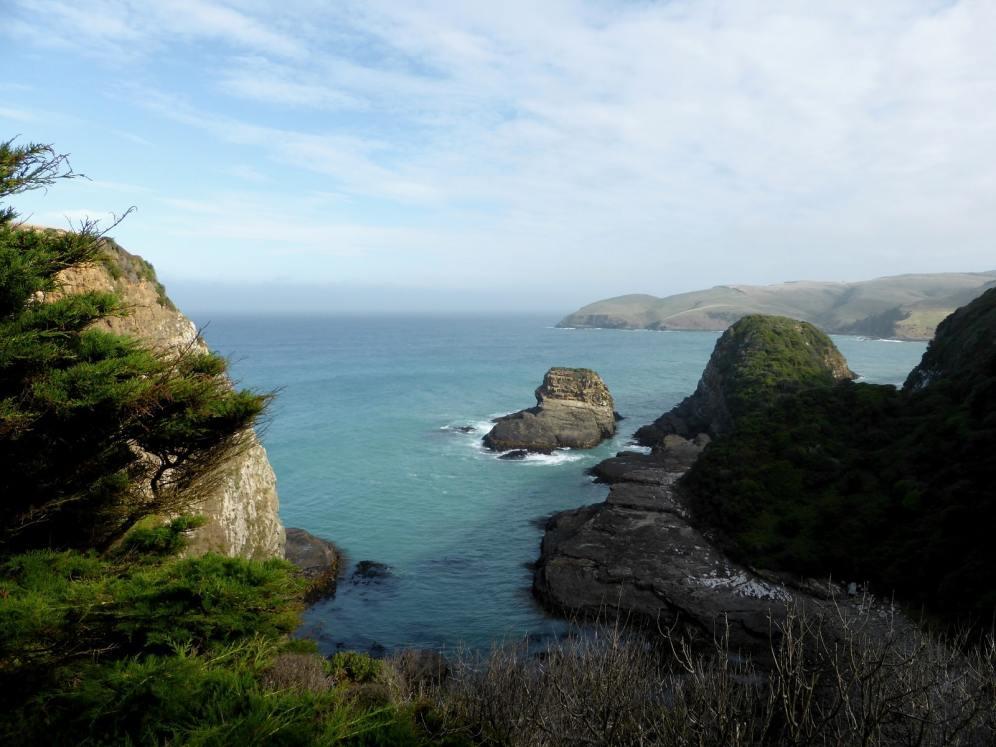 l'île du Sud-The Catlins (4)