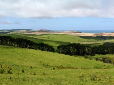 paysage nz-île du Nord