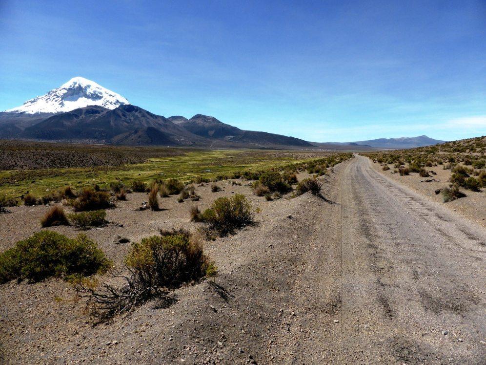 Parc National de Sajama-Bolivie (11)