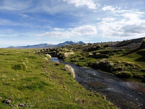 Parc National de Sajama-Bolivie (23)