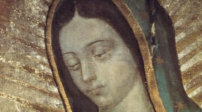 Notre Dame de Guadalupe et l'évangélisation de la culture II