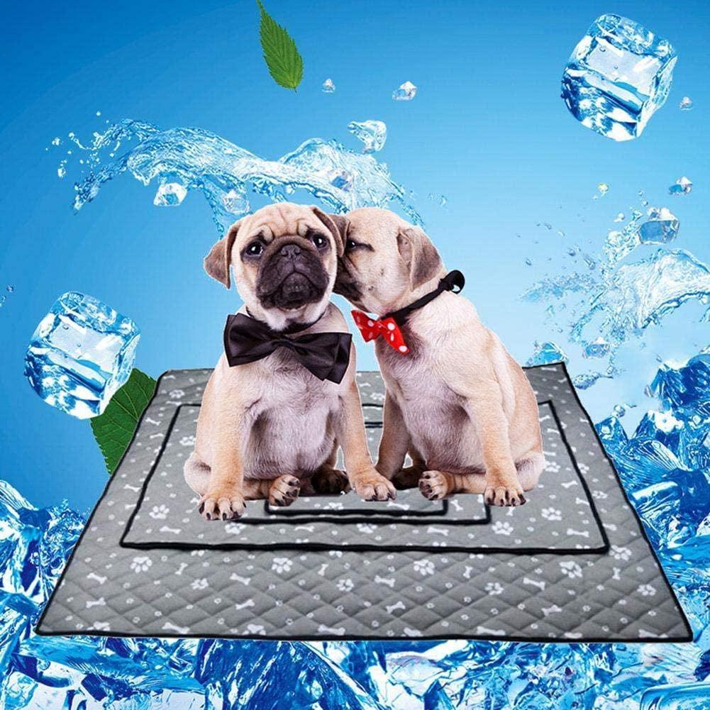 tapis rafraichissant pour chien notre
