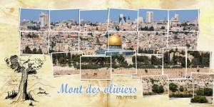 Israël Vie et Lumière 2019