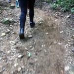 Caminar en la selva de Colombia
