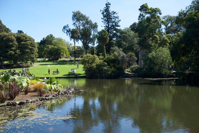 Melbourne Sehenswürdigkeiten Botanischer Garten