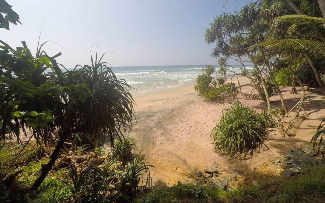 Urlaubsziele im Januar Sri Lanka