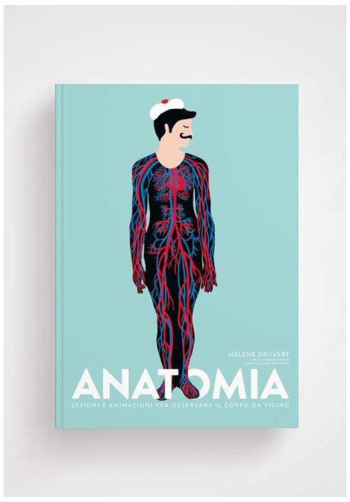 anatomia-sezioni-e-animazioni-per-osservare-il-corpo-da-vicino.jpg