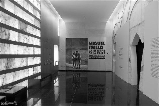 Miguel Trillo - La estirpe de la calle
