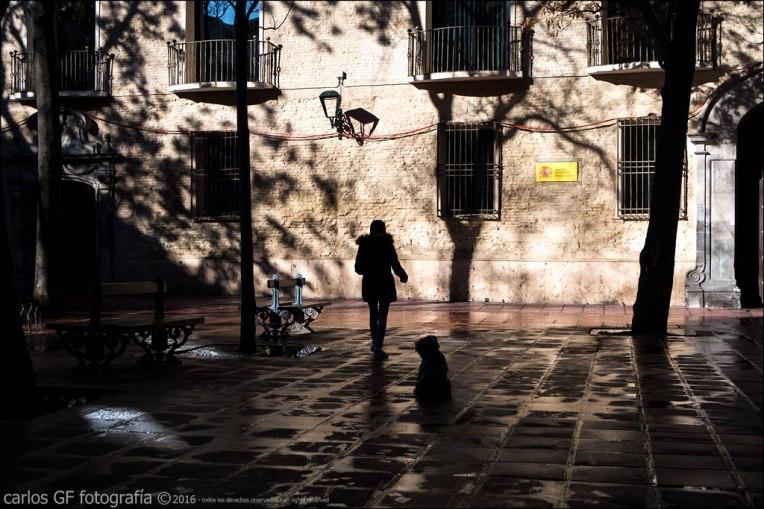 La chica y su perro