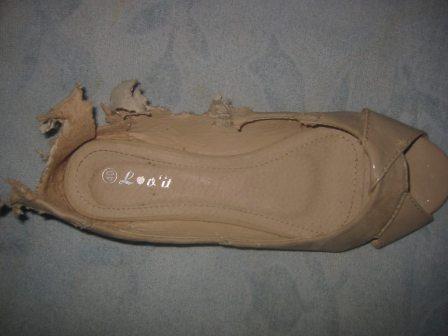 pantof-ros-de-caine