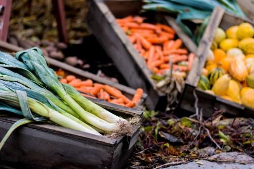 dsc_2091-1920-veggies-vienhoang-com