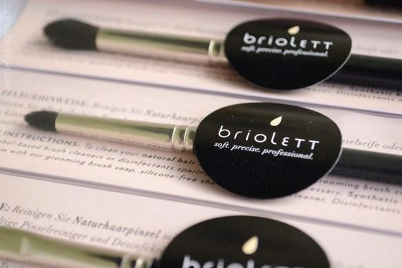 16 Briolett Make-up Pinsel