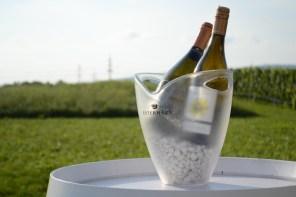 Weingut Esterhazy6