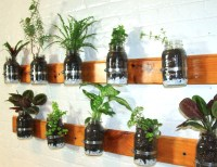 http://inhabitat.com/nyc/diy-model-summer-rayne-oakes-shows-you-how-to-make-a-mason-jar-herb-garden-for-your-kitchen-wall/summer-diy-herb-garden/