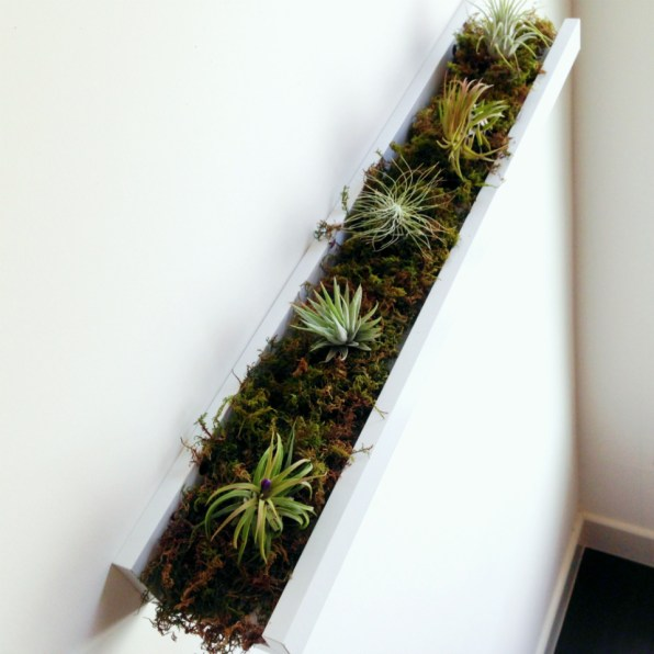 http://hotforhouses.com/2014/04/27/weekend-whimsy-ikea-hack-for-air-plants/