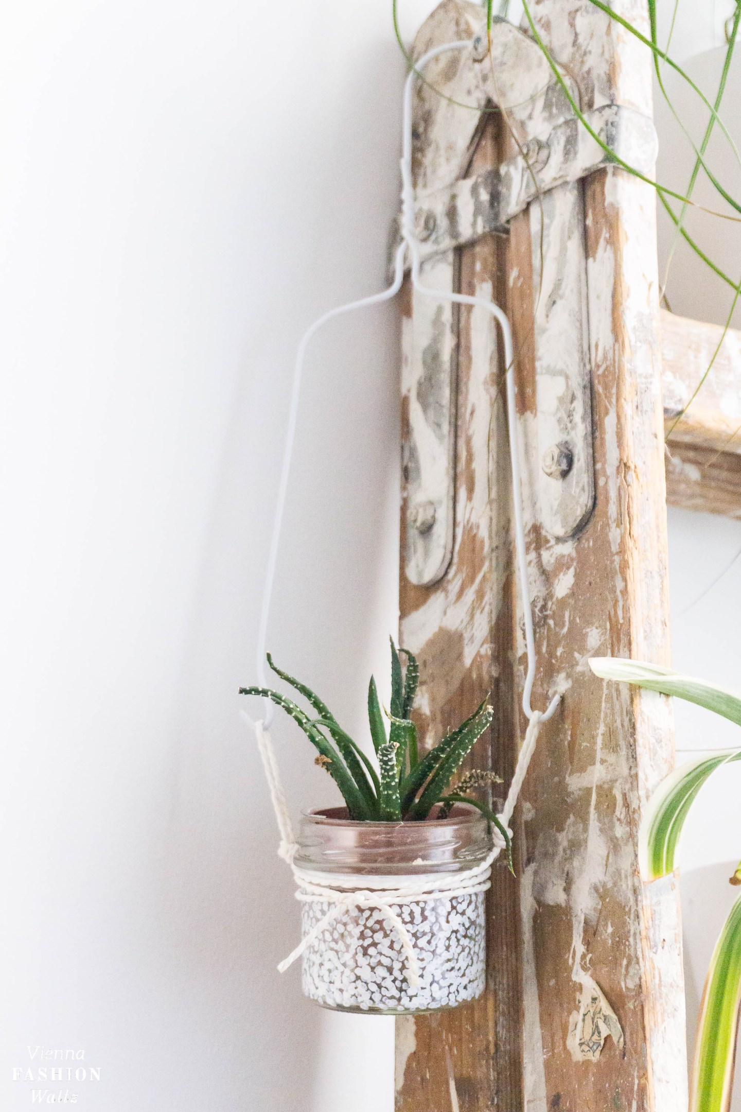 DIY Blumentopf zum Aufhängen | Upcycling Wall Planters, plantshelvie, urbanjunglebloggers, Zimmerpflanzen. Wohnideen, green living, Leben mit Pflanzen, Deko, Urban Jungle Ideen | DIY Indoor Garden Plant Ideas | Grünlilien, Pflanzenwand, hanging plants | Blog Vienna Fashion Waltz