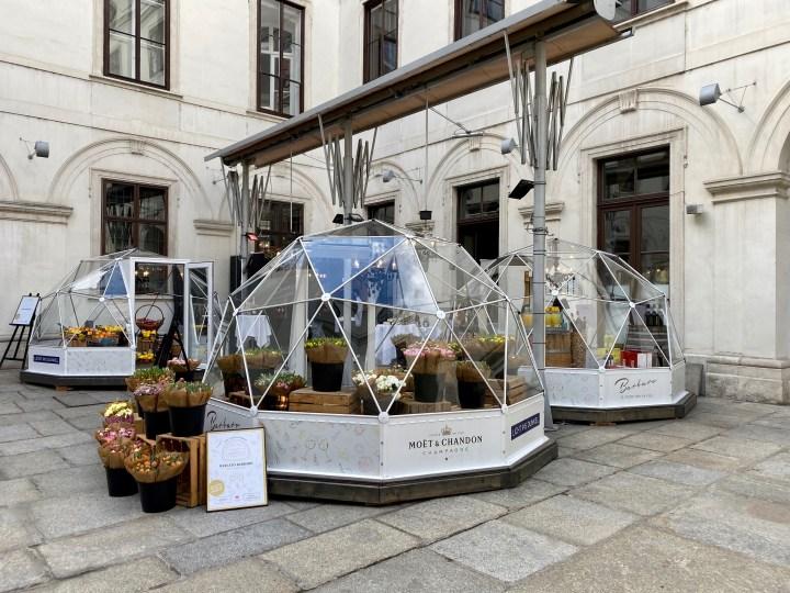 Neue Gourmet Take-aways im Wiener Frühling